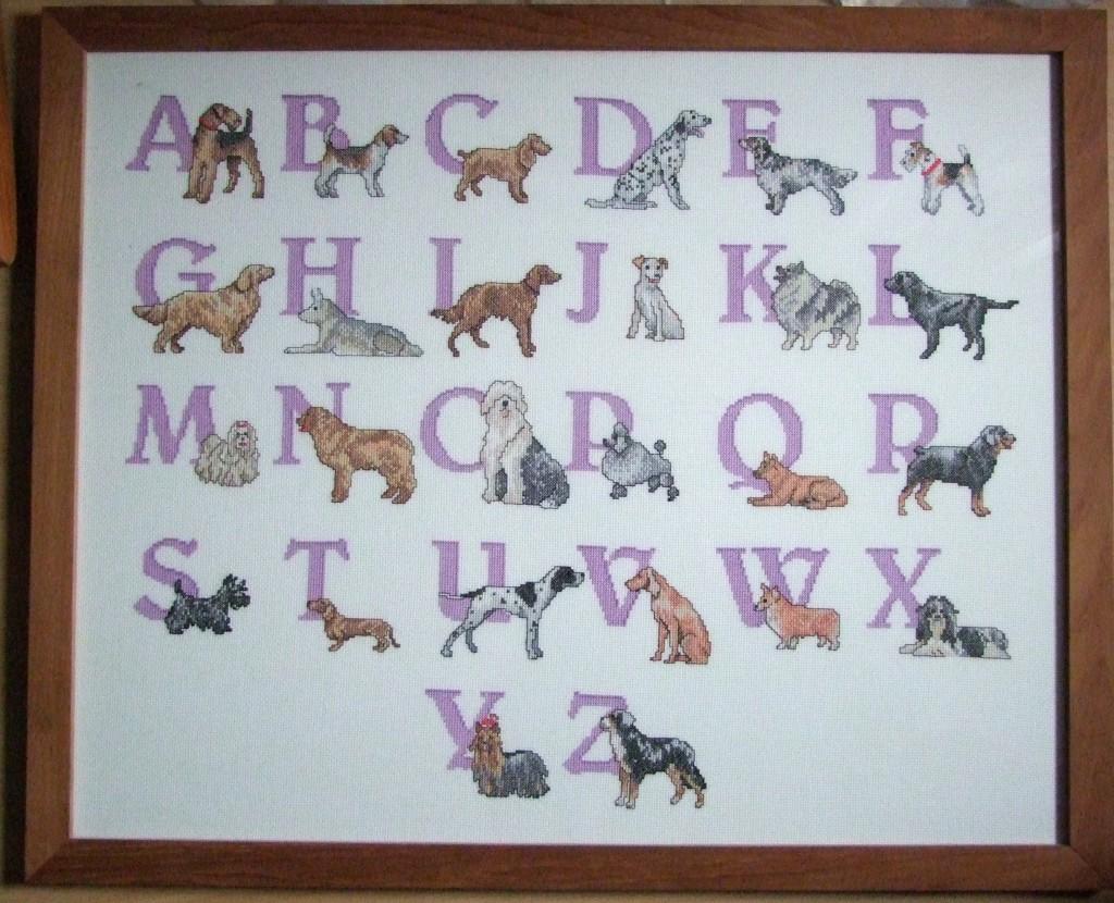 Honden-ABC